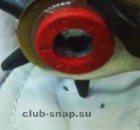 http://club-snap.su/sites/default/files/art_img/ka129.jpg