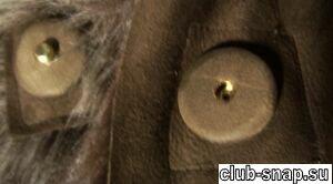 http://club-snap.su/sites/default/files/art_img/ka152c.jpg