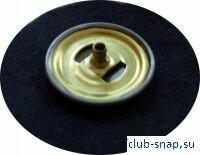 http://club-snap.su/sites/default/files/r4.jpg